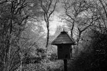 Wooden Birdhouse In The Forest With A Spooky Black And White Look
