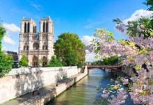 Notre Dame Cathedral, Paris Fr...
