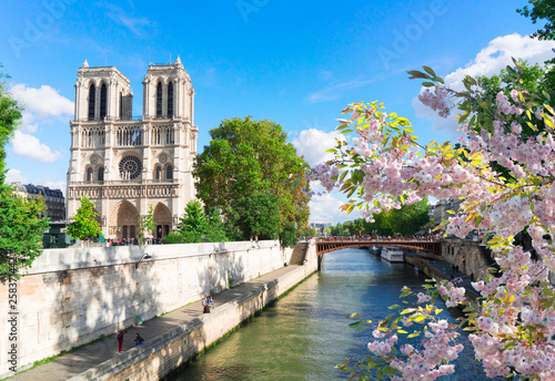 Fotografia  Notre Dame cathedral, Paris France