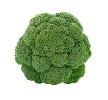 Fresh Broccoli Isolated On White. Broccoli Top View.