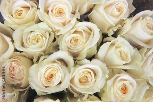 Fotobehang Roses bouquet of white roses