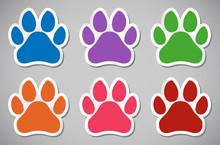 Animal Paw Print Vector Illustration Sticker