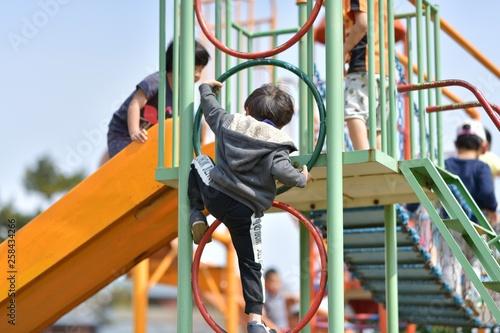 Stampa su Tela  公園で遊ぶ園児