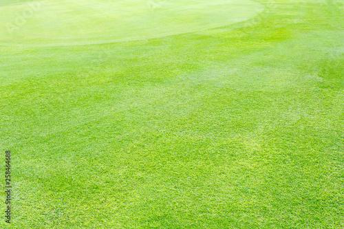 Papiers peints Vert chaux Green de golf