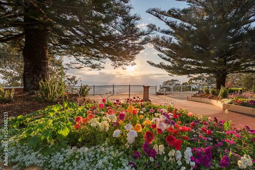 Foto auf AluDibond Schwarz Beautiful vista in Toowoomba