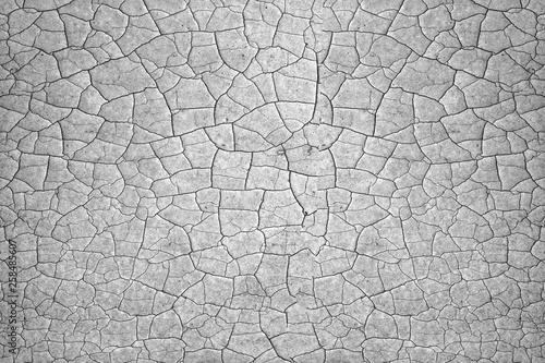 Fotografía  Cracked soil ground