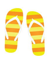 Colorful Flip Flops. Vector Illustration