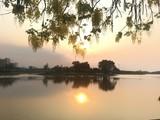 Fototapeta Krajobraz - The sunset at the park