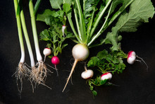 Overhead View Of Radish, Turni...