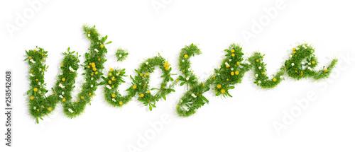 napis wiosna utworzony z trawy i kwiatów, 3D render
