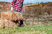 Farmer In Plaid Shirt In The Field, Working With The Straw Bales