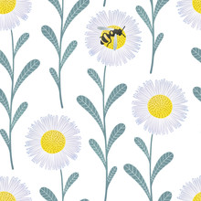 Seamless Floral Pattern With Chamomile Flowers And Bee On White Background
