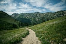 Wasatch Mountain Range, Alta, ...