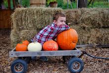 Happy Boy On A Farm With Pumpk...