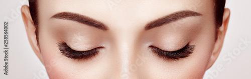 Pinturas sobre lienzo  Female Eye with Extreme Long False Eyelashes