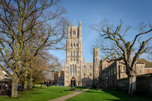 Ely Cathedral In Spring With B...