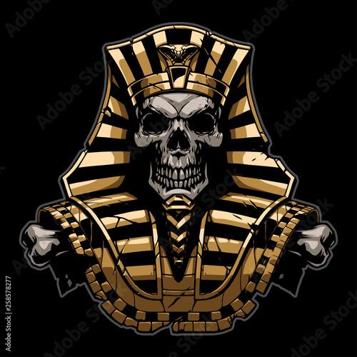 Fotografia Gold Pharaoh Skull