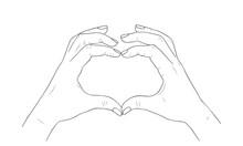 Vector Sketch Illustration - Female Hands Show Heart