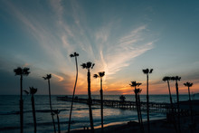 View Of Palm Trees, Beach, And The Pier At Sunset, In San Clemente, Orange County, California