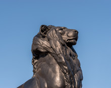 Bronze Lion Statue On Background Of The Blue Sky.