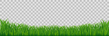 Green Meadow Grass Border Isolated On Transparent Vector Background.