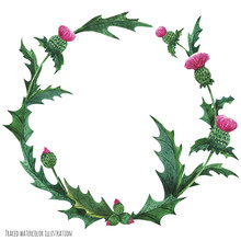 Wreaths From Thistle For Decoration