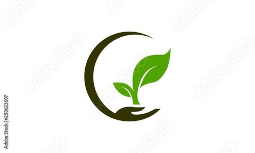 Carta da parati planting plant logo