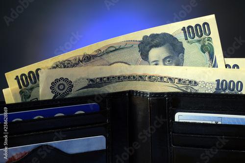Fototapeta  Silvana Comugnero  ft9102_0791 日本円 Japanese yen