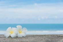 Beautiful Nature Sea Summer Ba...