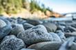A rocky coast line