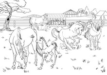 Cartoon Style Scene With Horses For A Stabling Management Book. Children Coloring Book Design.