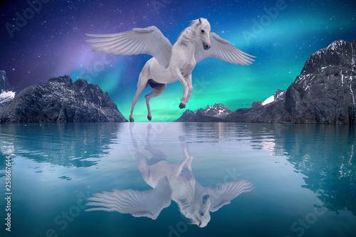 Montage in der Fensternische Blau Jeans Pegasus winged legendary white horse flying with spread wings on dreamy landscape