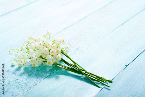 Poster Muguet de mai lily of the valley flowers on blue painted wood table background