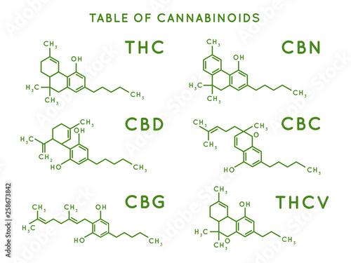 Cannabinoid structure Wallpaper Mural