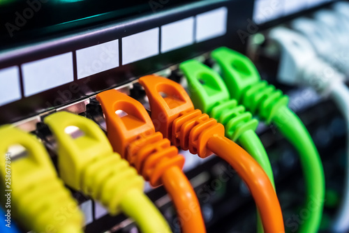 Vászonkép Colorful Telecommunication Colorful Ethernet Cables Connected to the Switch in I