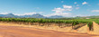 canvas print picture - Panoramic view of vineyard and the mountains in Franschhoek town in South Africa