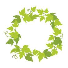Grapevines Plant Frame Circle ...