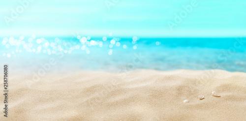 Foto auf AluDibond Licht blau Shells on sandy beach.