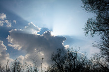Sunbeams Shining Through Grey Clouds With Silver Lining With Surrounding Trees