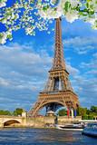 Fototapeta Wieża Eiffla - Eiffel Tower, Paris, France