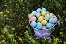 Colorful Easter Eggs Collected In A Purple Bucket On A Grass Background