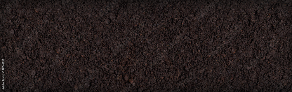 Fototapeta Soil texture background