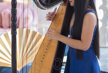 Female Fingers Playing The Harp