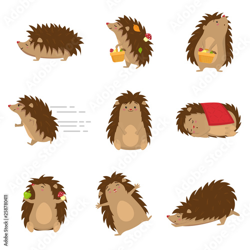 Cute hedgehogs in different poses set isolated on white background Poster Mural XXL