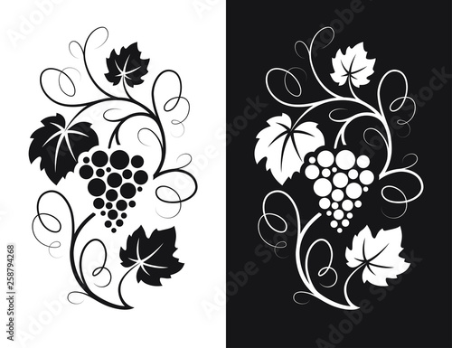 Fotografia, Obraz Grapes decorative pattern.