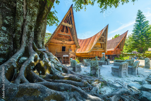 Batak traditional houses in a row, tree root in the foreground, teal orange look Wallpaper Mural