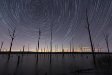 Star Trails Over A Lake With Barren Trees