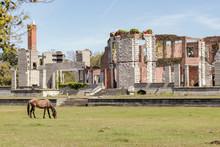 Ruins On Cumberland Island