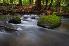 Water In Motion, Stream Flowing Around Moss Covered Rock