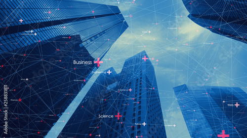 Fotomagnes 都市とネットワーク